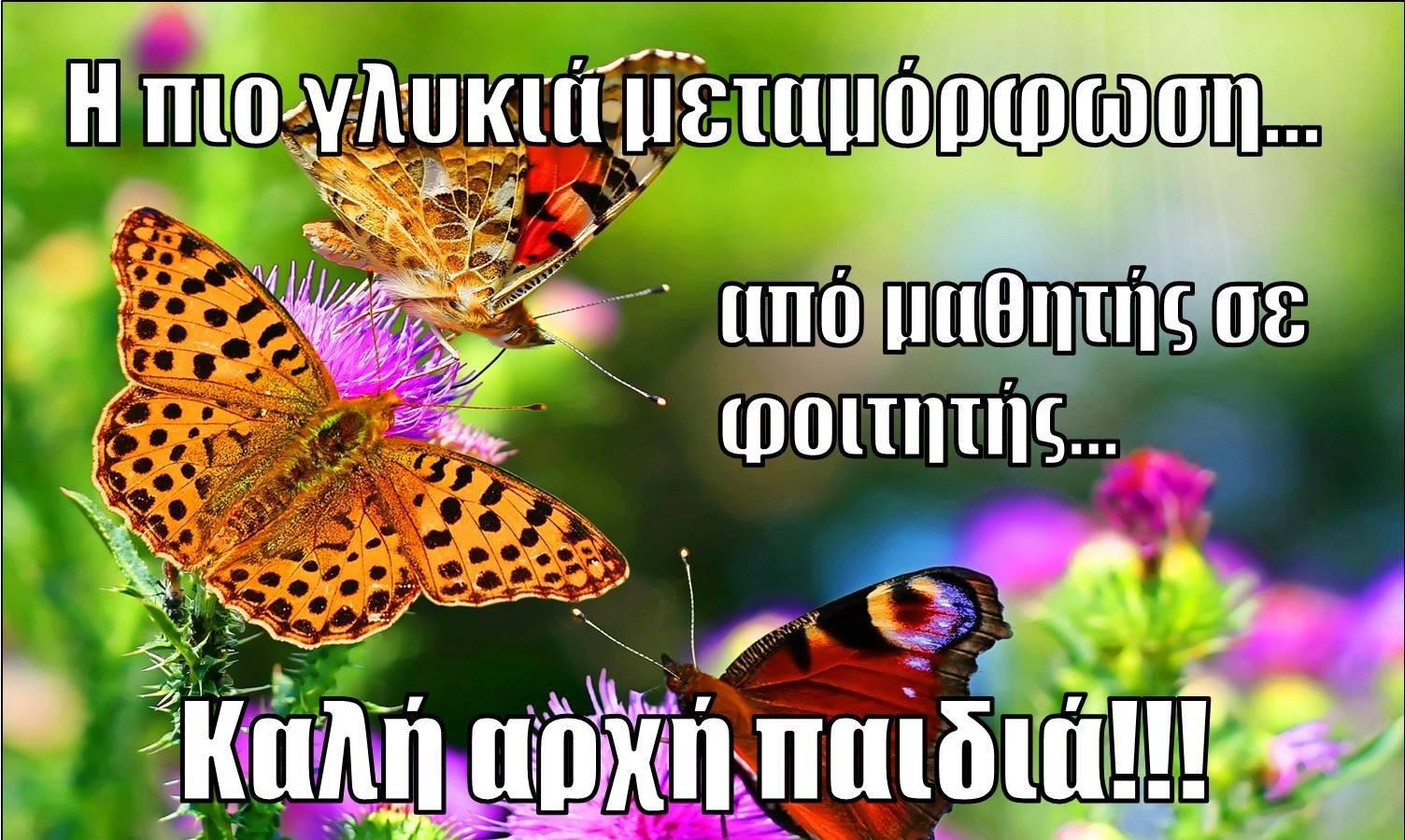 14138947_10210470615221231_1586311535_o